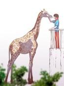 动物园物语 第17话